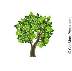 Tree icon Naturvektorsymbol