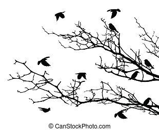 Tree Silhouette mit Vögeln.