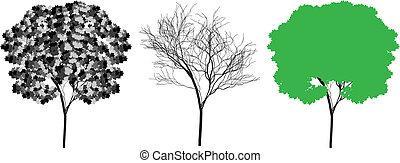 Tree silhouette Vektor
