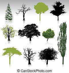 Tree Silhouettes Sammlung