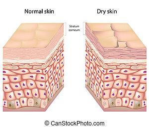 Trockene Haut, Eps8