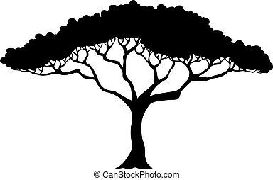 Tropische Baumsilhouette