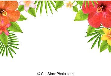 Tropische Blumen grenzen.