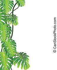 Tropische Pflanzengeschichte