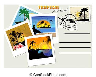 Tropische Postkarte