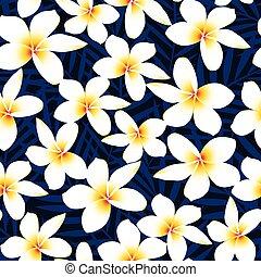 Tropische, weiße Frangipani-Pflanzenblüte nahtlos.