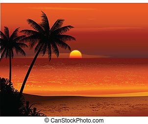 Tropischer Sonnenuntergang am Strand.
