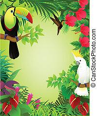 Tropischer Vogel im Dschungel