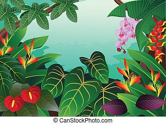 Tropischer Wald