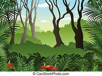Tropischer Wald Hintergrund.