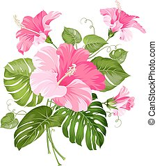 Tropisches Blumengemüse.