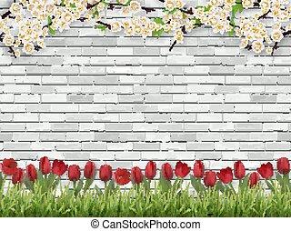 Tulpen-Baum Ast Gras weiße Ziegelwand.