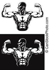 turnhalle, bodybuilder, biegen muskeln, silhouette, arm
