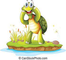 turtle, insel, lächeln