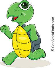 Turtle läuft