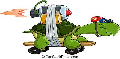 turtle, turbo