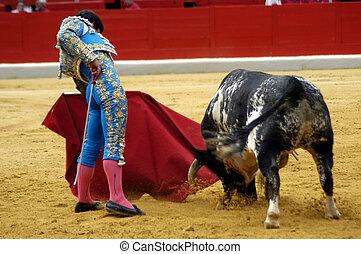 Typischer Stierkampf in Spanien