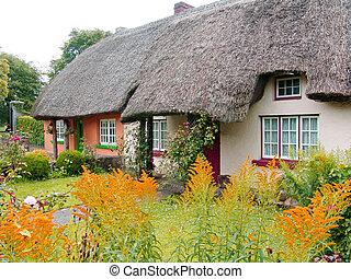 Typisches Dachhaus in Irland