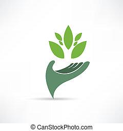 umwelt, ökologisch, ikone