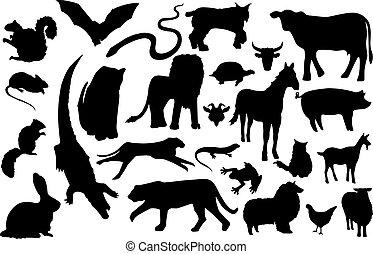 Unverzeihliche Tiersilhouette