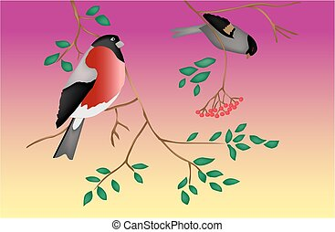 Vögel auf einem Baum. Twilight. Vector.