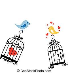 Vögel, die in Vogelkacke verliebt sind
