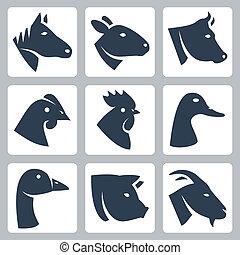 Vector domestizierte Tiere mit Ikonen: Pferd, Schaf, Kuh, Huhn, Hahn, Ente, Gans, Schwein, Ziege