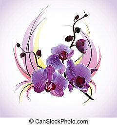 Vector Grußkarte mit Orchideen