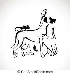 Vector Gruppe von Haustieren - Hund, Katze, Papagei, Chamäleon, Kaninchen, Schmetterling isoliert auf weißem Hintergrund.
