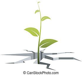 Vector Illustration eines Keims, das aus Rissen im Boden wächst.