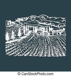 Vector Illustration von Weinbergen. Handskizze von Villa, homestead in Feldern und Hügeln. Eine mediterrane Landschaft.