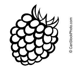 Vector Monochrome Illustration von Himbeer-Logo.