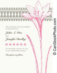 Vector Pink Lily Hintergrund und Bild