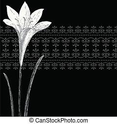 Vector-Schwarze Iris-Strahlung und Ornament-Banner