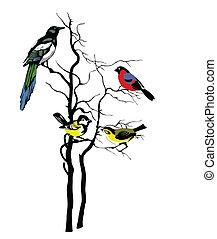 Vector Silhouette der Vögel auf dem Baum