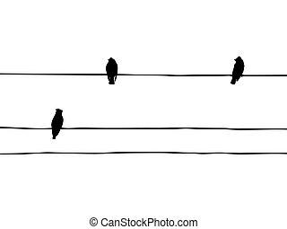 Vector Silhouette der Vögel der Wachsflügel auf Draht