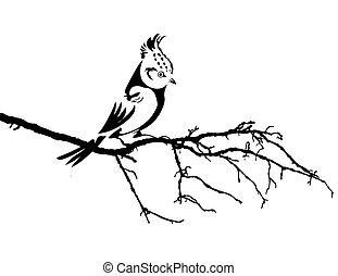 Vector Silhouette des Vogels auf der Ast.