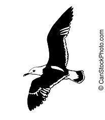 Vector Silhouette, fliegende Seemöwen im weißen Hintergrund
