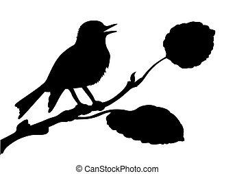 Vector Silhouette vom Vogel auf Zweig