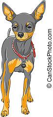 Vector Sketch Hund Chihuahua Rasse.