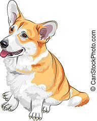 Vector Sketch Hund Pembroke Welsh Korgi lächelnd.