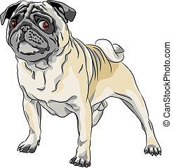 Vector Sketch, wütender Hund, Pug