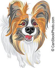 Vector Stammhund Papillon Rasse.