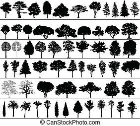 vektor, bäume