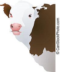 Vektor illustriert den Kopf einer Kuh