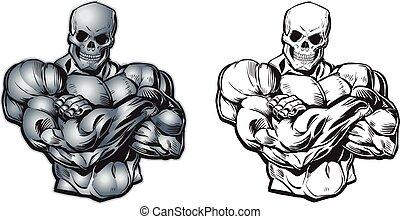 vektor, karikatur, muskulös, totenschädel, oberkörper, kopf