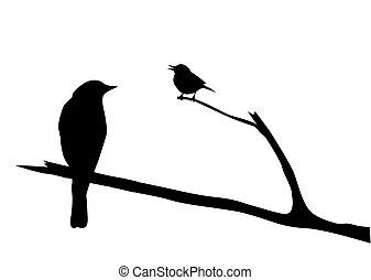 vektor, silhouette, vogel, zweig