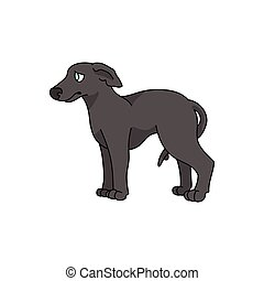 vektor, windhund, freigestellt, schnell, karikatur, rasse, clipart., canine., rennsport, pooch, salon, hundehütte, hund, inländisch, stammbaum, eps, jagdhund, lovers., haustier, junger hund, 10., illustration., purebred, reizend