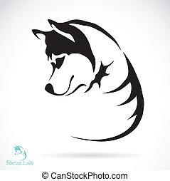 Vektorbild eines Hundes, siberianischer Husky.