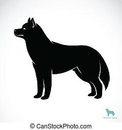 Vektorbild eines Hundes sibirischer Husky.